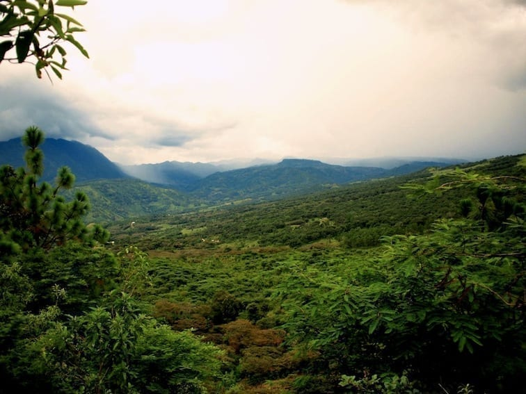 Lush-mountains where El Tucan is grown